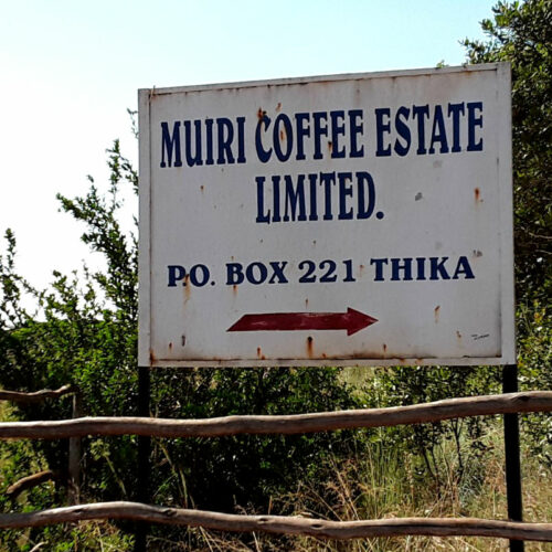 kenya coffee sign